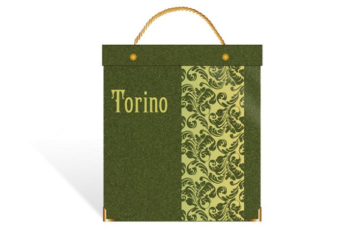 torino_book.jpg